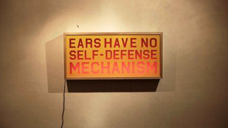 Ears-Have-No-Self-Defense-Mechanism---2017
